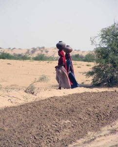 Since 2000, India has witnessed three serious droughts.