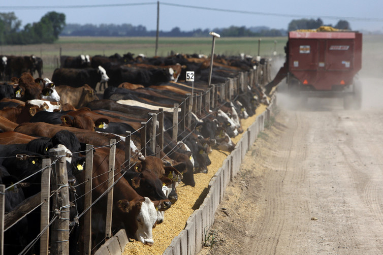 Who doesn't love Argentine beef? Mexico probably would. Marcos Brindicci/Reuters